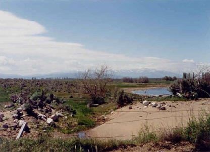 Farm at Acequia